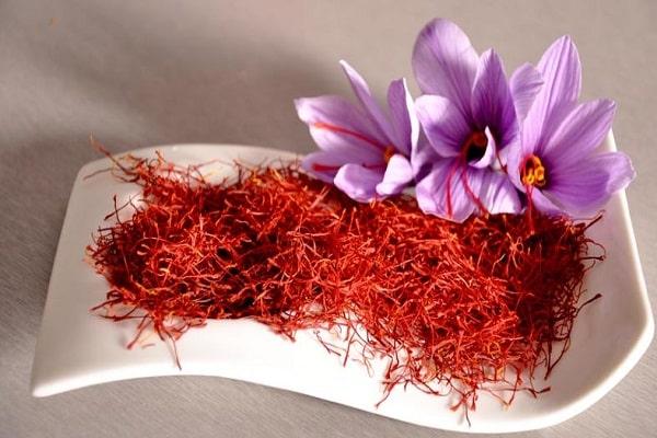 کشت و پرورش زعفران