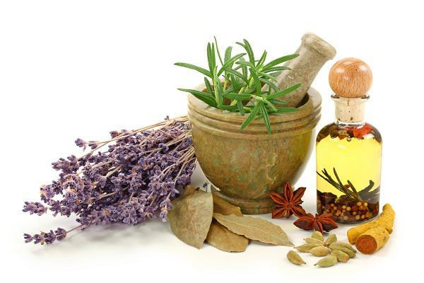 طرح توجیهی تولید و فرآوری گیاهان دارویی