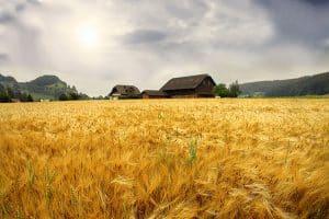 تسهیلات کشاورزی