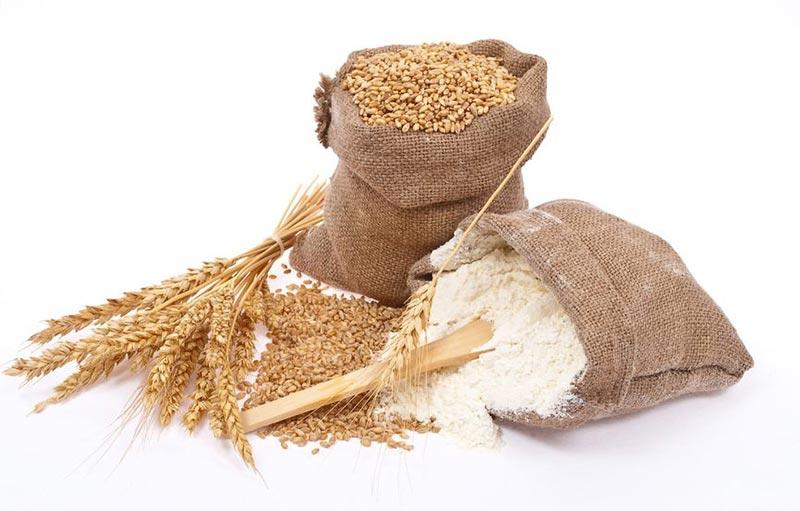 طرح توجیهی تولید آرد گندم